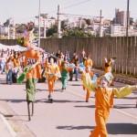 Carnaval da Limpeza